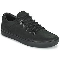 Schoenen Heren Lage sneakers Timberland ADV 2.0 CUPSOLE ALPINE OX Zwart