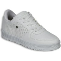 Schoenen Heren Lage sneakers Cash Money Schoenen - Sneaker Low - States Full White Wit