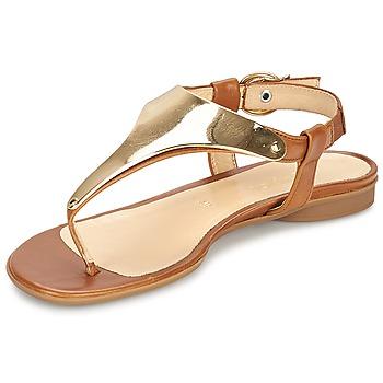Schoenen Dames Sandalen / Open schoenen Gabor TARULE Bruin
