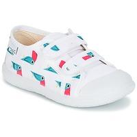 Schoenen Meisjes Lage sneakers Citrouille et Compagnie GLASSIA Wit