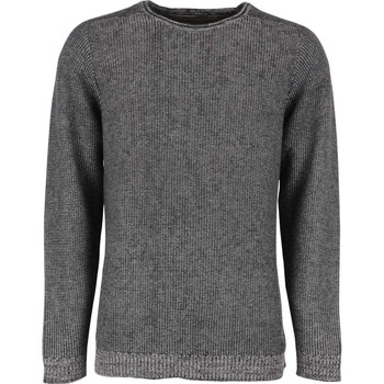 Textiel Heren Truien No Excess Pullover r-neck insite out Grijs