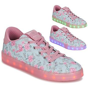 Schoenen Meisjes Lage sneakers Geox J KOMMODOR G. B Blauw / Roze