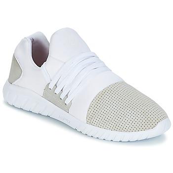 Schoenen Heren Lage sneakers Asfvlt AREA LUX Wit / Grijs