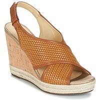Schoenen Dames Sandalen / Open schoenen Geox JANIRA C Bruin