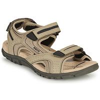 Schoenen Heren Sandalen / Open schoenen Geox S.STRADA D Zand / Marine
