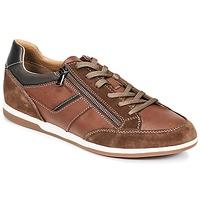Schoenen Heren Lage sneakers Geox U RENAN C Bruin