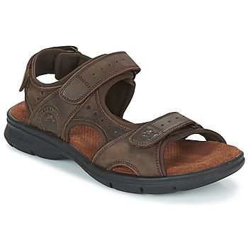 Schoenen Heren Sandalen / Open schoenen Panama Jack SALTON Bruin