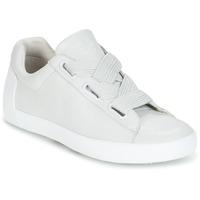 Schoenen Dames Lage sneakers Ash NINA Grijs