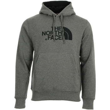 Textiel Heren Sweaters / Sweatshirts The North Face Drew Peak Pullover Hoodie Grijs
