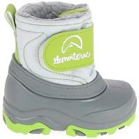 Schoenen Kinderen Snowboots Elementerre Albox BB Vert Groen