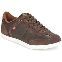 Schoenen Heren Lage sneakers Levi's LOCH Bruin