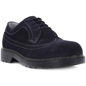 Schoenen Jongens Bootschoenen Nero Giardini NERO GIARDINI INDIOS Blu