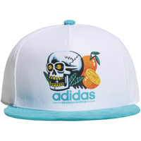 Accessoires Heren Pet adidas Originals Skulls Snapback Pet Wit / Groen