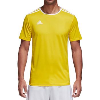Textiel Heren T-shirts korte mouwen adidas Originals Entrada 18 Jersey Gelb