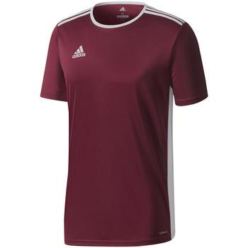 Textiel Heren T-shirts korte mouwen adidas Originals Entrada 18 Jersey Rot