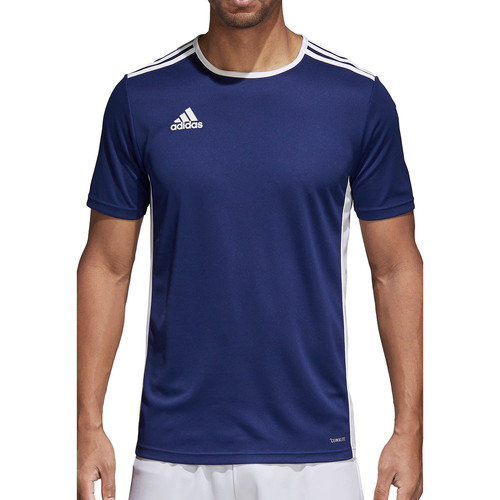 Textiel Heren T-shirts korte mouwen adidas Originals Entrada 18 Jersey Blau