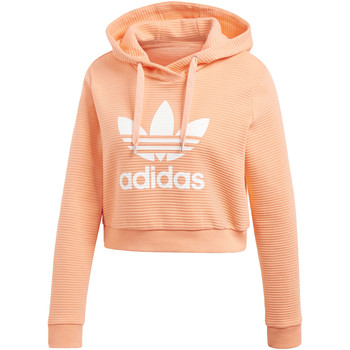Textiel Dames Sweaters / Sweatshirts adidas Originals Trefoil Cropped Hoodie orange
