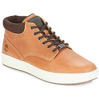 Schoenen Heren Hoge sneakers Timberland CityRoam Cupsole Chukka Bruin