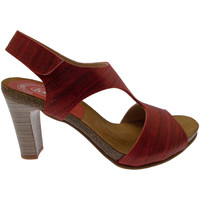 Schoenen Dames Sandalen / Open schoenen Calzaturificio Loren LOJ0833ne nero