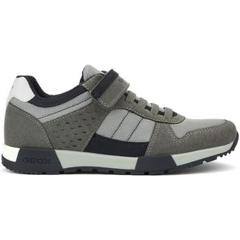 Schoenen Dames Lage sneakers Geox ALFIER M GREY