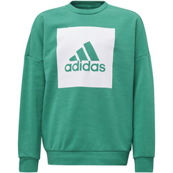 Textiel Jongens Truien adidas Performance Essentials Big Logo Sweatshirt Groen / Wit