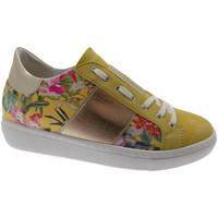 Schoenen Dames Lage sneakers Calzaturificio Loren LOC3785gi nero