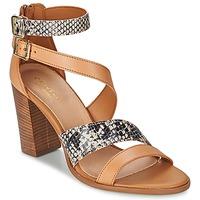 Schoenen Dames Sandalen / Open schoenen Carvela KISSY Bruin