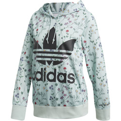 Textiel Dames Trainings jassen adidas Originals Hoodie green