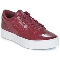 Schoenen Dames Lage sneakers Reebok Classic WORKOUT LO FVS Bordeau