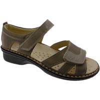 Schoenen Dames Sandalen / Open schoenen Calzaturificio Loren LOM2524to tortora