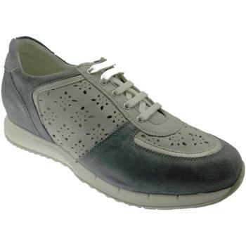 Schoenen Dames Lage sneakers Calzaturificio Loren LOC3795bl blu