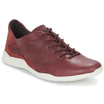Schoenen Dames Lage sneakers TBS JARDINS Bruin