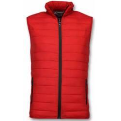 Textiel Heren Dons gevoerde jassen Y Chromosome Bodywarmer Heren - Casual Bodywarmer - Rood 8