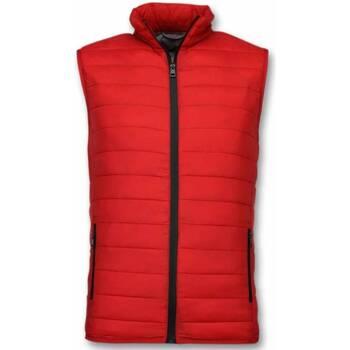 Textiel Heren Dons gevoerde jassen Y Chromosome Bodywarmer - Casual Bodywarmer - Rood