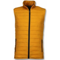 Textiel Heren Dons gevoerde jassen Y Chromosome Bodywarmer - Casual Bodywarmer - Geel