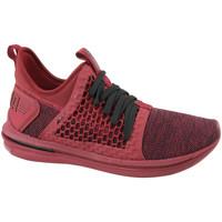 Schoenen Heren Lage sneakers Puma Ignite Limitless SR Netfit Rouge