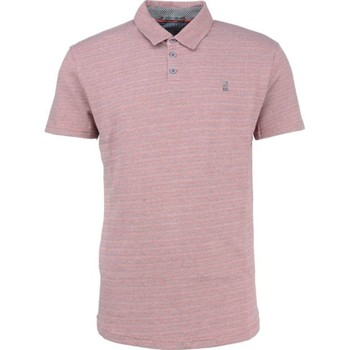 Textiel Heren Polo's korte mouwen No Excess T-shirt s/sl, polo, 3 coloured jacq cranberry Roze