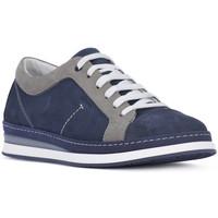 Schoenen Heren Lage sneakers Igi&co NABOUK MORBIDO Blu