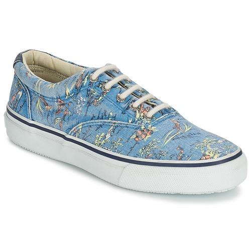 Schoenen Heren Lage sneakers Sperry Top-Sider STRIPER HAWAIIAN Blauw