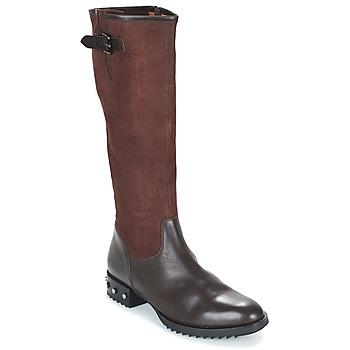 Schoenen Dames Hoge laarzen Mam'Zelle XANE Bruin