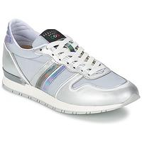 Schoenen Dames Lage sneakers Serafini LOS ANGELES Zilver / Grijs