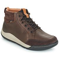Schoenen Heren Hoge sneakers Clarks ASHCOMBE Bruin