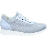 Schoenen Dames Lage sneakers Paul Green 4627 Grijs