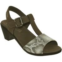 Schoenen Dames Sandalen / Open schoenen Mephisto Carine Taupe nubuck