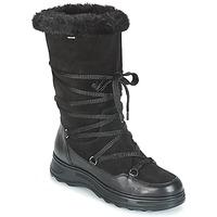Schoenen Dames Snowboots Geox D HOSMOS B ABX Zwart