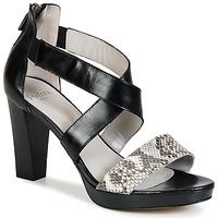 Schoenen Dames Sandalen / Open schoenen Perlato IREGUA Zwart / Slang