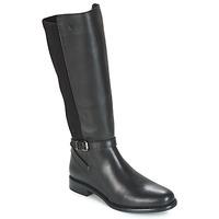 Schoenen Dames Hoge laarzen Betty London JENDAY Zwart