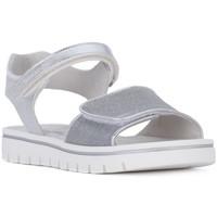Schoenen Meisjes Sandalen / Open schoenen Nero Giardini NERO GIARDINI  NOTURNO GHIACCIO Bianco