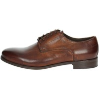 Schoenen Heren Derby Veni T0007 Brown