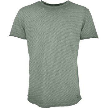 Textiel Heren T-shirts korte mouwen No Excess T-shirt s/sl, r-neck, yd stripe , i steel Groen